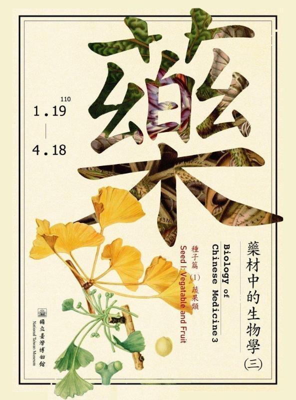 【微型展】藥材中的生物學(三)-種子篇(1)蔬果類